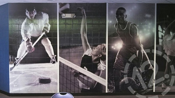 Wall mural installed on a textured surface for A-Game Sportsplex. 12-Point SignWorks - Franklin, TN