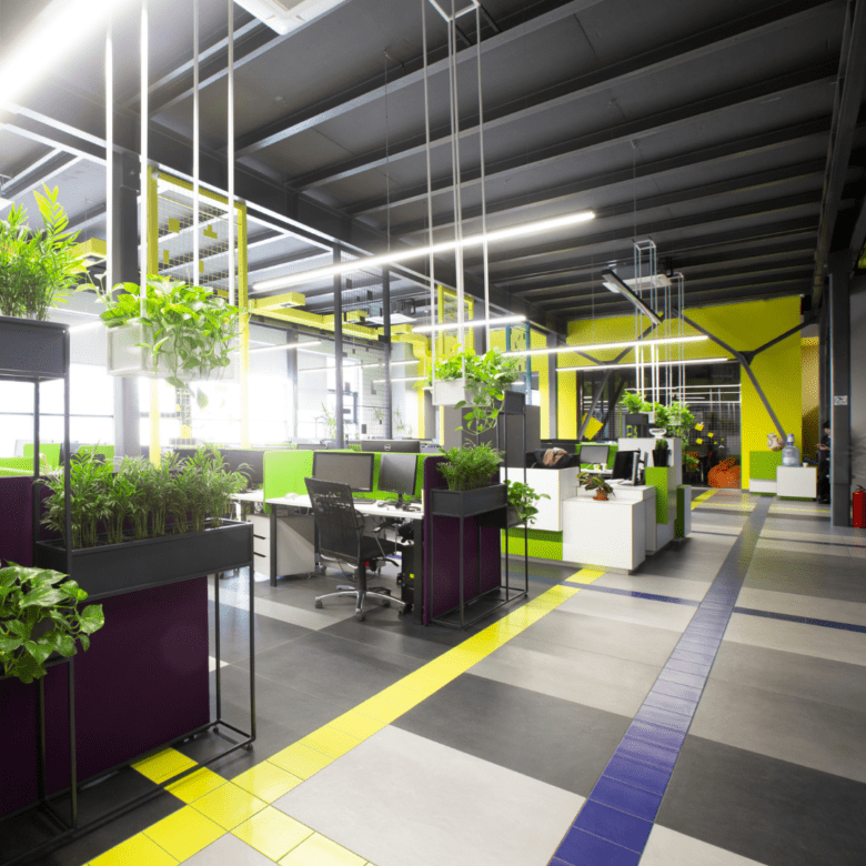Example of A Biophilic Design Throughout A Office Space
